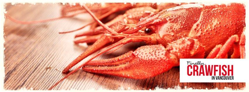 Google Reviews Spice Seafood Cajun Kitchen