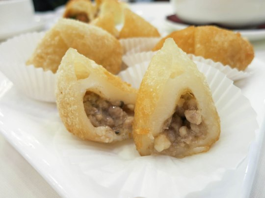 Deep Fried Meat Dumplings